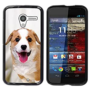 Vortex Accessory Hard Protective Case Skin Cover For Motorola Moto X ( 1St Gen Only ) - Harrier English Foxhound Coonhound