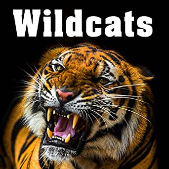 Wildcats Sound Effects by Sound Ideas on Amazon Music