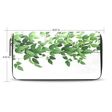 Amazon.com: Green Climbing Wall of Ivy Leaf - Cartera larga ...