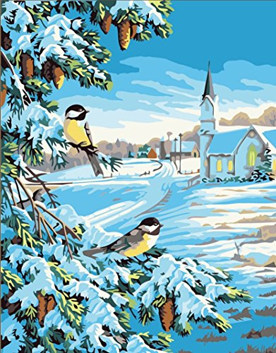 New Paint by Number Kits - Winter Birds 16x20 inch