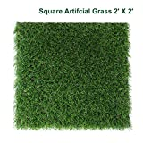 Petgrow Decorative Square Artificial Grass Pet Turf 2FT X 2FT(4 Square FT) Customized Sizes - Indoor Outdoor Garden Lawn Landscape balcony Home Synthetic Turf Mat - Thick Fake Grass Carpet
