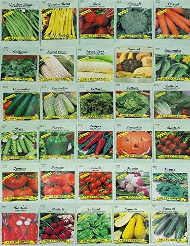 Set of 30 assorted vegetable seeds