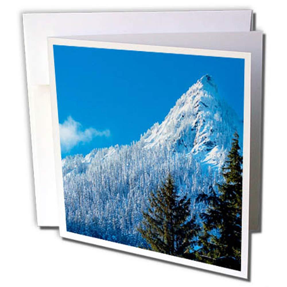 3dRosa 12 strapazierfähiges Karton Papier (GC 260540 _ 2) B079DFHZC2 | Ausgezeichneter Wert