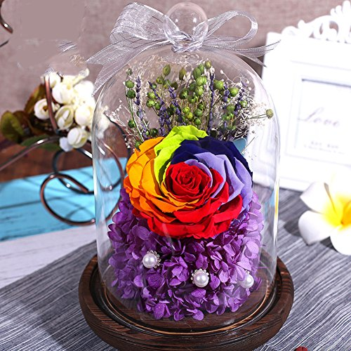 glass immortal flower/gift of roses/colorful roses for mother's day gift/ creative holiday gifts-D (Mothers Day Giftsd)
