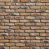 Koni Brick Old Chicago Buff 10.76 sq. ft. Flats 0.65 in. x 8.20 in. x 2.50 in. Thin Brick