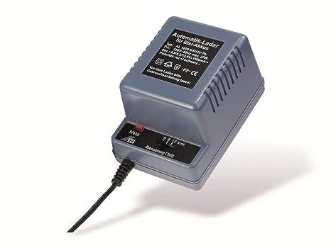 H-Tronic - Cargador para batería de plomo: Amazon.es ...