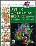 Atlas de neurosciences humaines de Netter: Neuroanatomie - Neurophysiologie