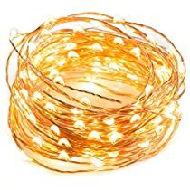 TaoTronics LED String Lights 33 ft with 100 LEDs