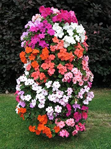 3FT. FLOWER TOWER - MADE IN EUROPE - Pepper Tower
