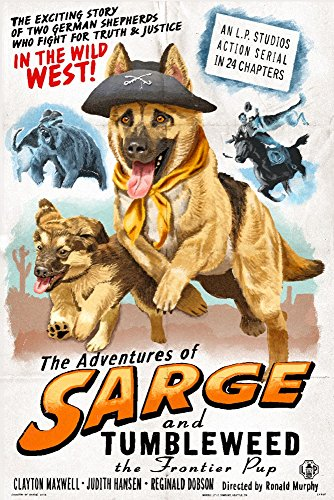 German Shepherd - Adventures of Sarge and Tumbleweed