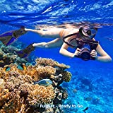 Arkmiido Snorkel Set - Fully Dry Top