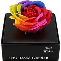 MIHOUNION Rosas Artificiales Falsas Rose Heads pétalos