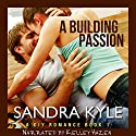 A Building Passion: DIY, Book 1 Audiobook by Sandra Kyle Narrated by Kelley Hazen