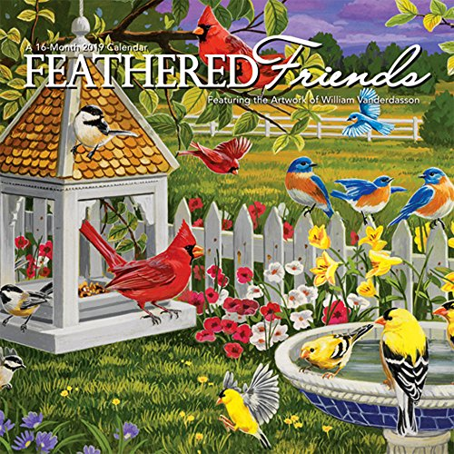 Feathered Friends 2019 7x7 Inch Monthly Mini Wall Calendar by Hopper, Wildlife Animals Feathers (Calendar Friends)