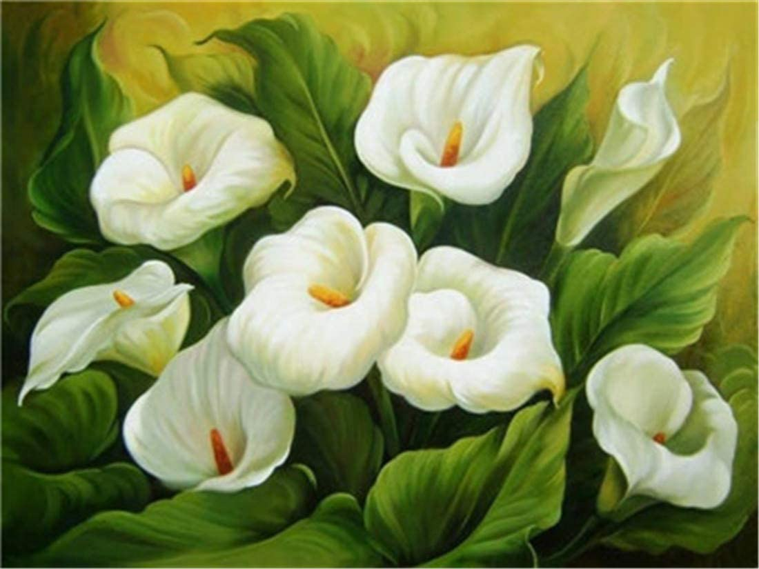 Amazon Com Diy Oil Painting Paint By Number Kit For Kids Adults Beginner 16x20 Inch Calla Lilies Drawing With Brushes Christmas Decor Decorations Gifts Frame