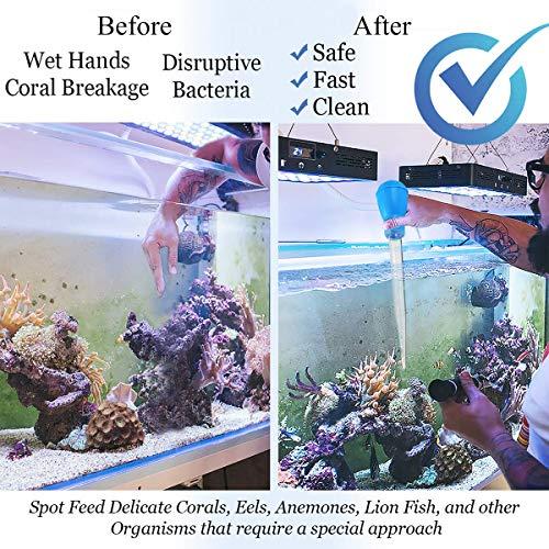 Amazon.com: Comedero de coral SPS HPS, alimentador largo ...