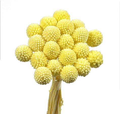 Fiori Gialli A Palla.Meen Fiori Artificiali Palla D Oro Fiore Essiccato Bouquet