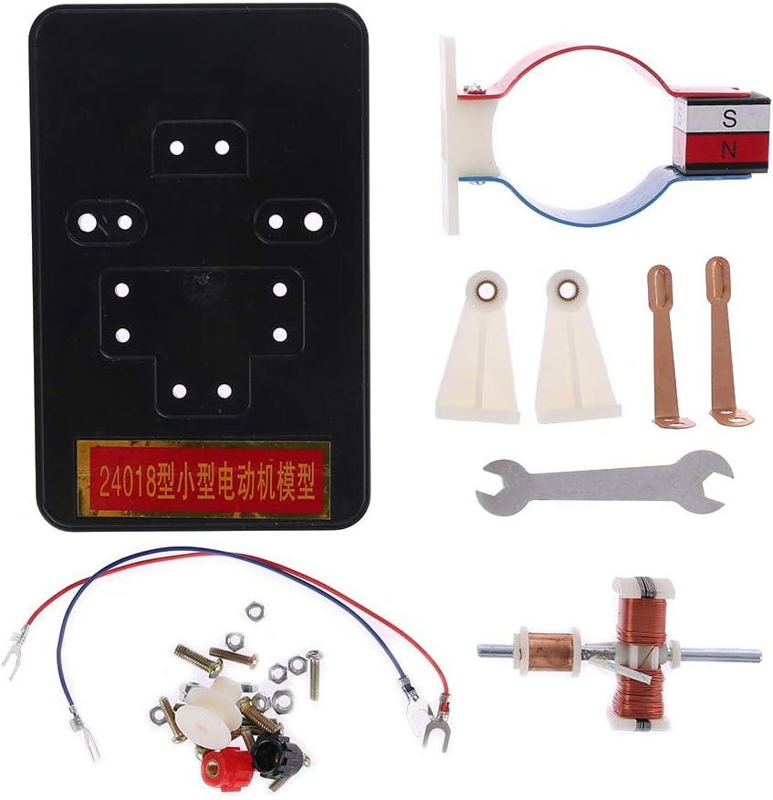 RROVE Modell DIY Einfache DC Elektromotor Modell Montieren Kit f/ür Kinder Physik Wissenschaft Lernspielzeug