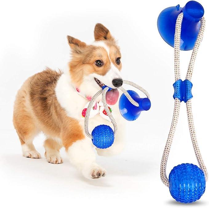 Ghonlzin Multifunction Pet Molar Bite Toy Multifunktions Spielzeug Für Welpen Hund Molar Bite Toy Hund Molar Spielzeug Aus Naturkautschuk Zahnreinigung Mit Zahnpflege Funktion Für Hund Blue Haustier