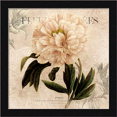 White Peony II Carol Robinson Vintage Style Cream Floral Framed Art Print Wall Decor Picture (Peony Framed)