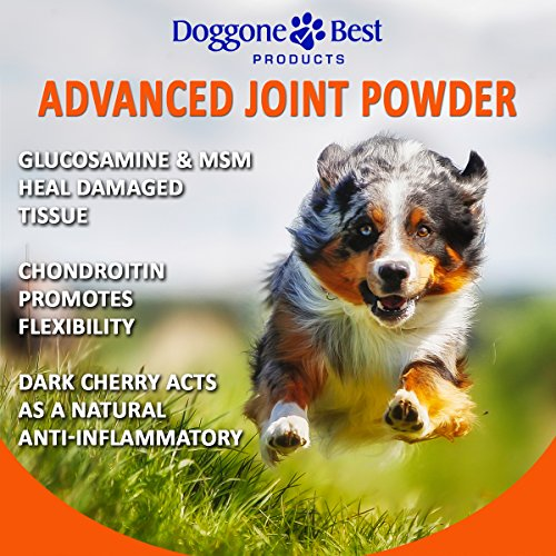 Image of Glucosamine Powder for Dogs - Hip and Joint Supplement for Dogs - Eases Arthritis Pain - Made in the USA