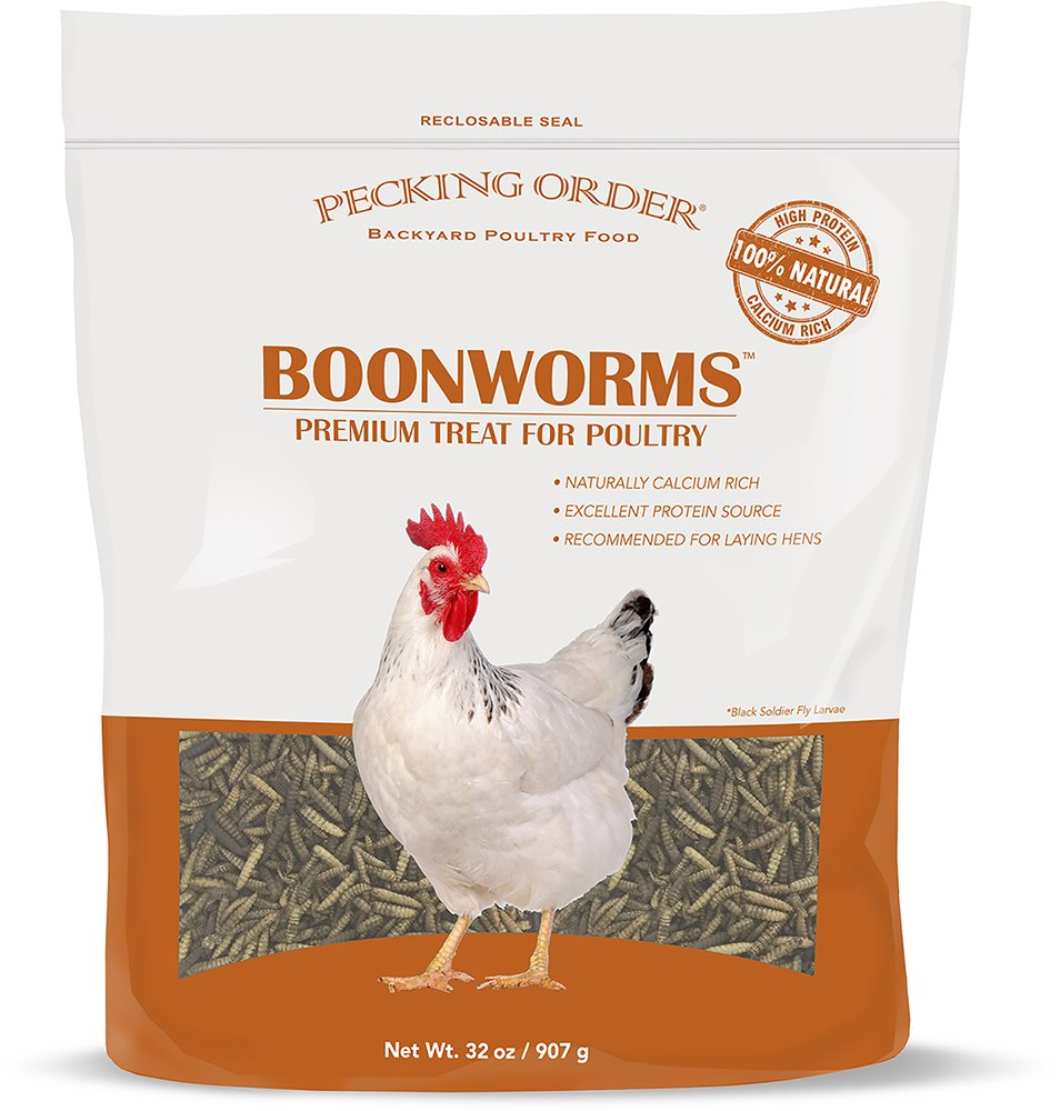 Pecking Order Boonworm Treats, Dried Boonworms (32 oz)