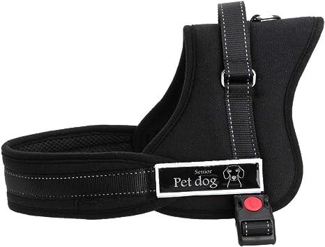 Arnés ajustable al pecho para perro con acolchado suave, ayuda ...