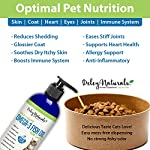 Wild Caught Fish Oil for Cats - Omega 3-6-9, GMO Free - Reduces Shedding, Supports Skin, Coat, Joints, Heart, Brain, Immune System - Highest EPA & DHA Potency - Only Ingredient is Fish - 16 oz 10