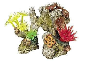 Nobby - Adorno de piedra de coral con plantas para acuario (11 x 7 x 8,5 cm): Amazon.es: Productos para mascotas