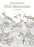 Millie Marotta's Wild Savannah (Postcard Box): 50 Postcards (A Millie Marotta Adult Coloring Book)