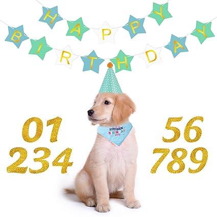 POPETPOP Suministros para Fiestas de Cumpleaños para Perros ...