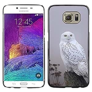 Be Good Phone Accessory // Dura Cáscara cubierta Protectora Caso Carcasa Funda de Protección para Samsung Galaxy S6 SM-G920 // White Black Gray Nature Bird