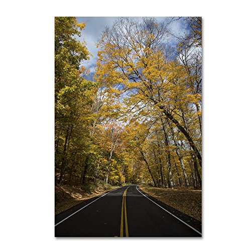 "picture of Trademark Fine Art Autumn Along the Valley Parkway 2 Wall Decor by Kurt Shaffer, 30"" x 47"""