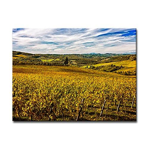 "UPC 641938967999, Ready2HangArt Bruce Bain 'Tuscan Landscape VII' Canvas Art, 12"" H x 16"" W"