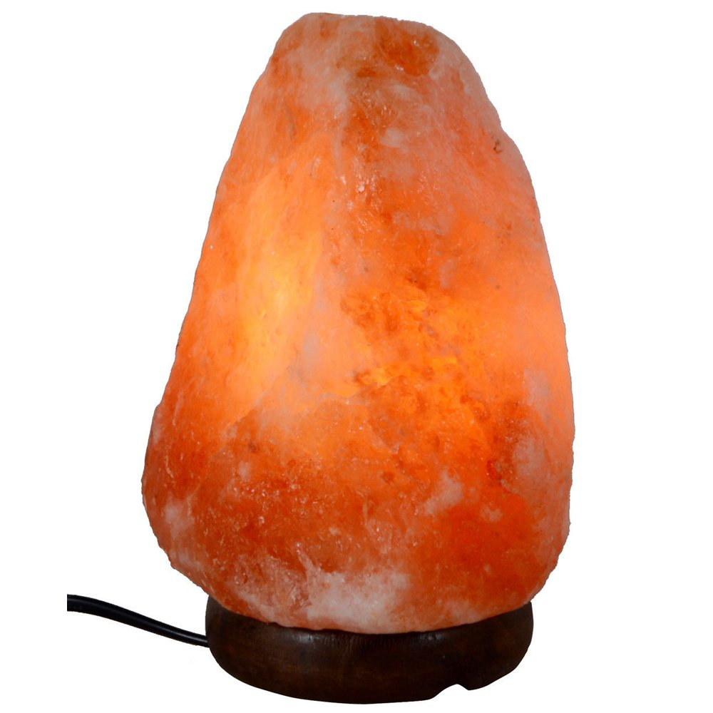 Dream Gem Natural Himalayan Salt Lamp 8-11lb,around 9'' Natural Shape Air Purifier Salt Lamp by Dream Gem