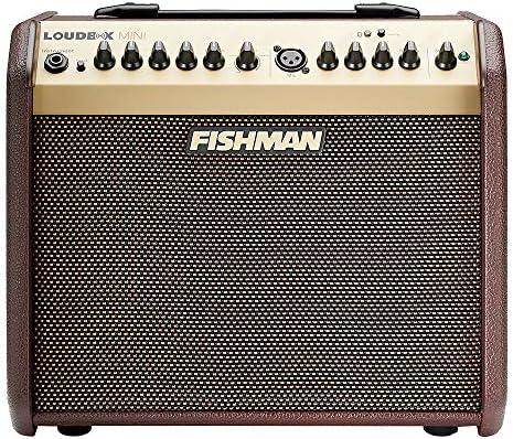 FISHMAN フィッシュマン アコースティックギターアンプ Loudbox Mini Bluetooth Amplifier
