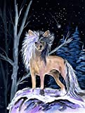 Caroline's Treasures SS8390CHF Starry Night Chinese Crested Flag Canvas, Large, Multicolor Review
