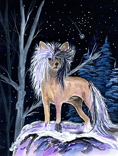 Cheap Caroline's Treasures SS8390GF Starry Night Chinese Crested Flag, Small, Multicolor
