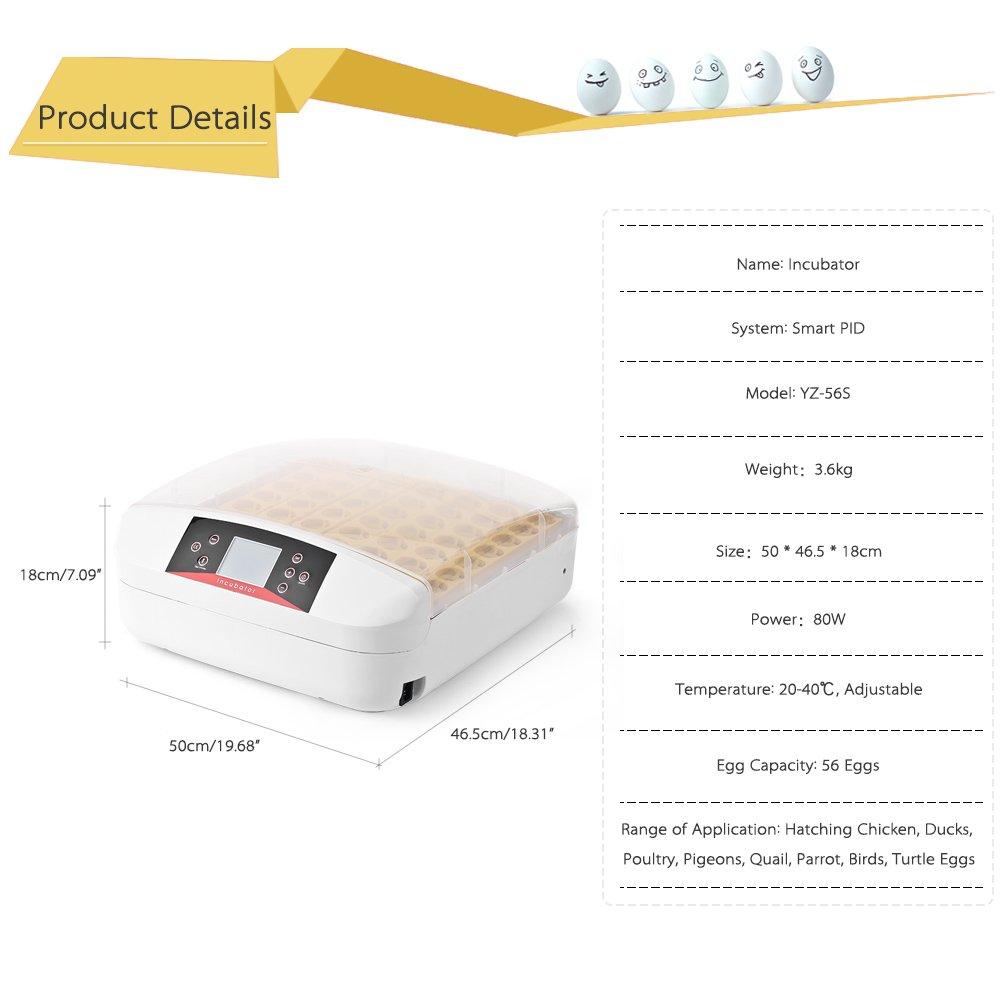 Compra Anself - Profesional 56 Huevos Incubadora Automática con Inteligencia para Aves Gallinas Patos Pigeons Tortugas, Temperatura Sensible, ...