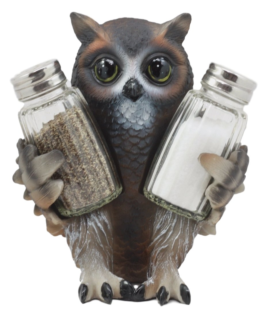 Ebros Gift Cute Owlet Baby Owl Glass Salt /& Pepper Shakers Holder Figurine Set Wildlife Forest Sculpture