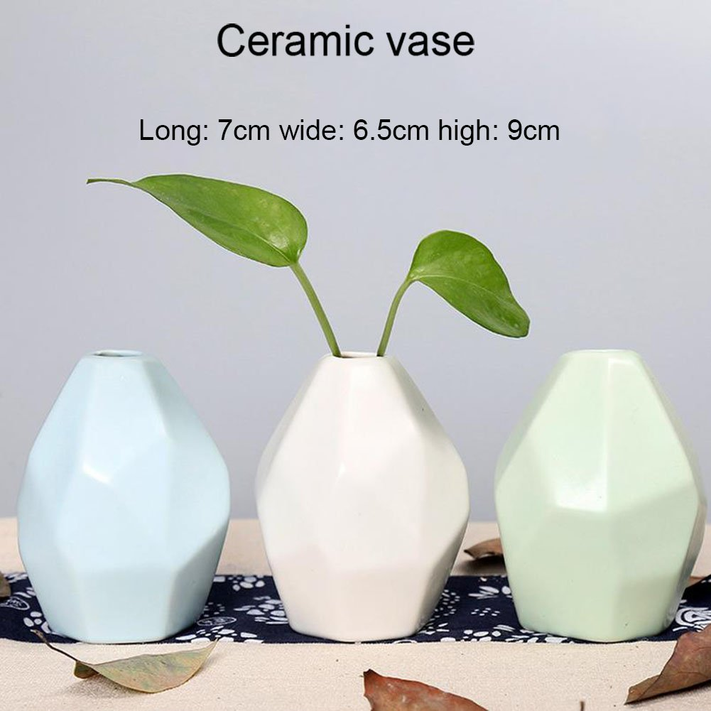 Da.Wa 1Pcs Ceramic Vase Hydroponic Decorative Flower Pot Home Decoration Vase (White)