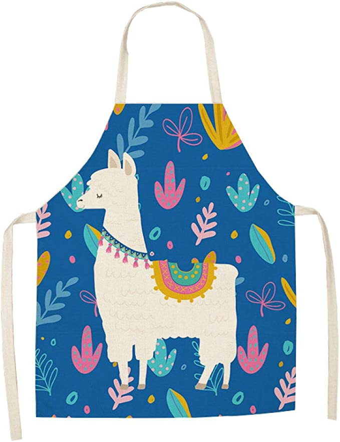 Funny BBQ Apron Novelty Grilling Party Gift Kitchen Apron