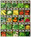 Set of 25 Premium Vegetable & Herb Seeds - 25 Deluxe Variety Premium Vegetable & Herb Garden 100% Non-GMO Heirloom