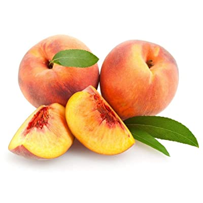 """Peach Tree"" Nemaguard Peach Seeds, 3 Premium Quality Tree Seeds, 70-90% Germination in Good Conditions, Prefers Well-Drained soils, (Isla's Garden Seeds) : Garden & Outdoor"