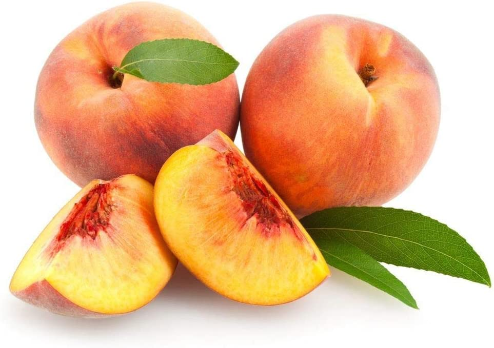 Prefers Well-Drained soils, 3 Premium Quality Tree Seeds 70-90/% Germination in Good Conditions Peach Tree Nemaguard Peach Seeds Islas Garden Seeds