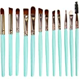STELLAIRE CHERN 12 Pieces Professional eye Makeup Brush Set Cosmetic Brushes Kit