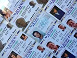 Set of 5 Back To The Future Novelty ID Cards