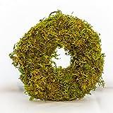 Fat Plants San Diego Mini Sphagnum Moss Wreath