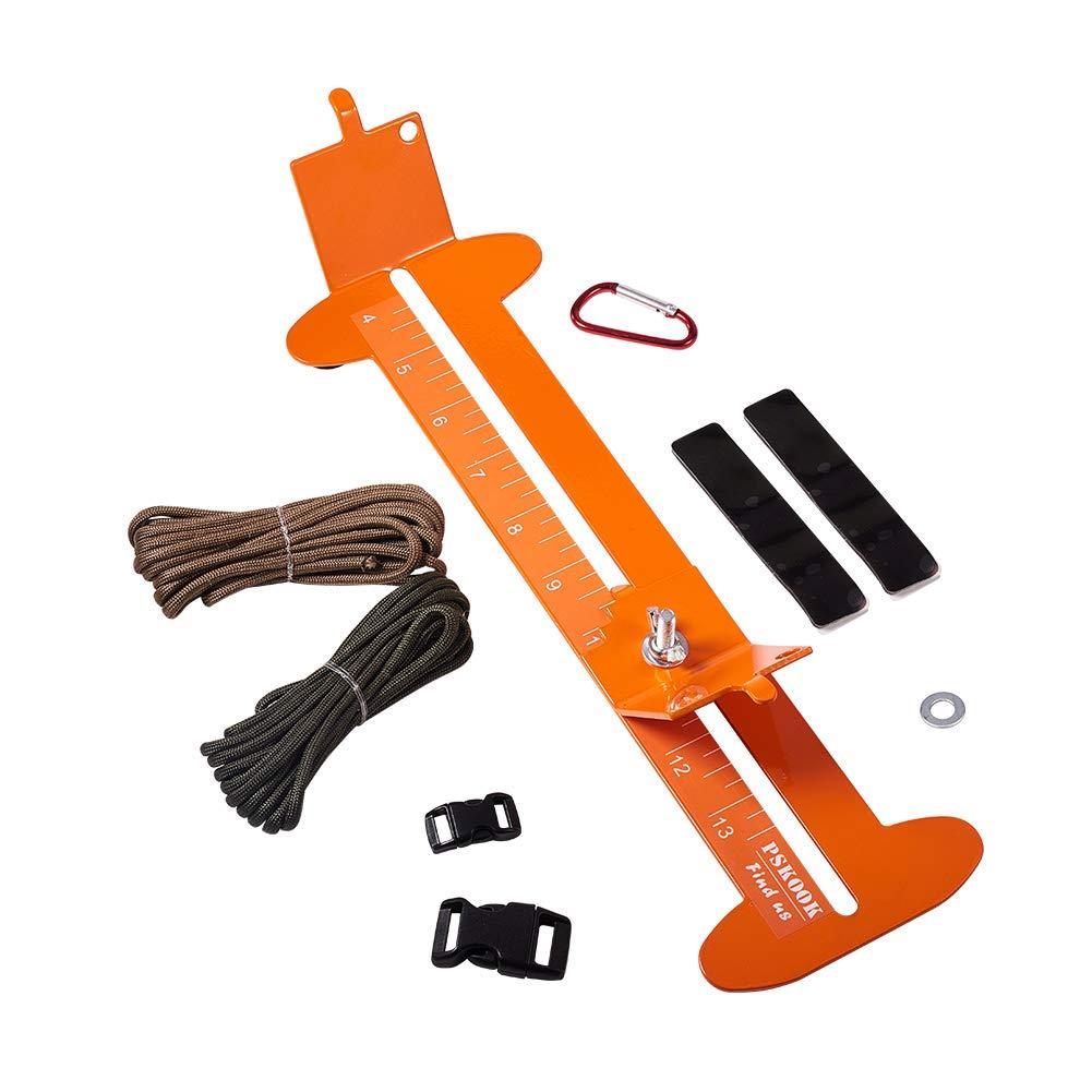 Orange - 6 Types