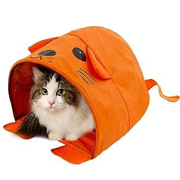 CSwonder Pet tienda de campaña casa gatitos jugar verano cama animal para gato gatito perros Cool Mouse o forma cuadrada: Amazon.es: Productos para mascotas